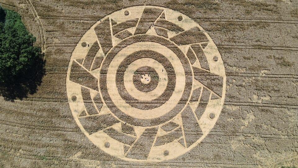 Viljapeltokuvio Ammerseessa
